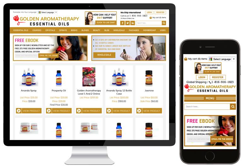 WebDesk Solution portfolio